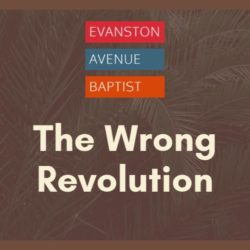 The Wrong Revolution