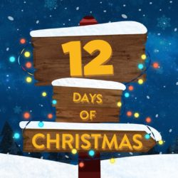 """""""Day 4"""" of the 12 Days of Christmas Devotional"""